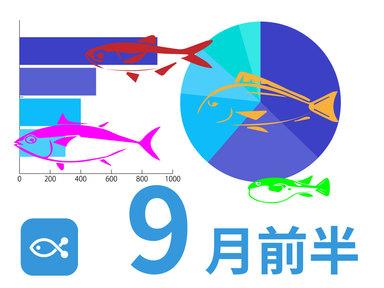 なんか一気に秋になった気がする!ANGLERSだからできるデータ満載、9月前半に釣れた魚はこれだ!