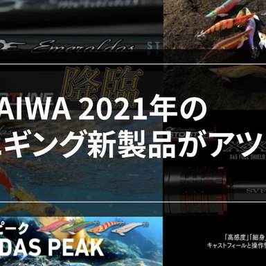 【エギング】 DAIWA 2021年の新商品をご紹介!
