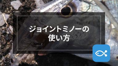 【ライトゲーム】ジョイントミノーを使いこなそう!!byライト太郎
