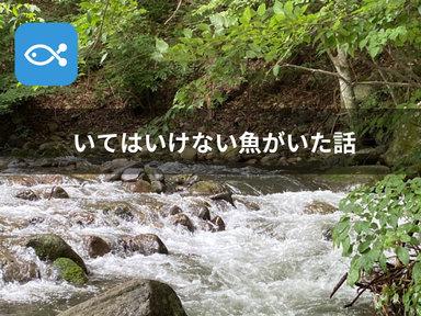 とある渓流に行ったら、いてはいけない魚がいた。