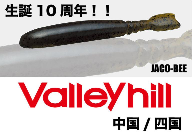 【Valleyhill@中国/四国】2018年度3月大会