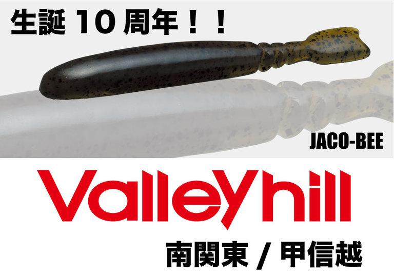 【Valleyhill@南関東/甲信越】2018年度3月大会