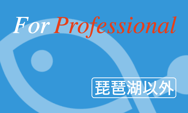 【琵琶湖以外】For Professional