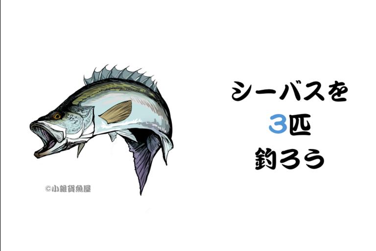 第1回【週間早いもの勝ち】シーバス3匹釣ろう