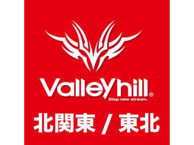 【Valleyhill@北関東/東北】2018年度3月大会