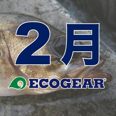 【ECOGEAR】メバルオープン 2018-2019 2月