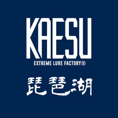 KAESU大会(琵琶湖)