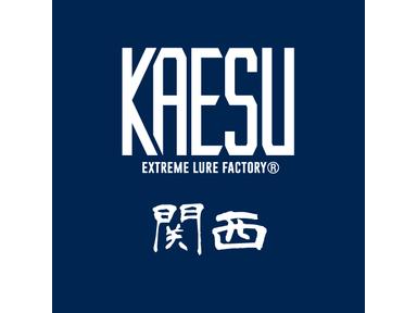 KAESU大会(関西)