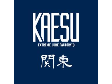 KAESU大会(関東)