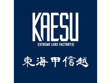 KAESU大会(東海甲信越)
