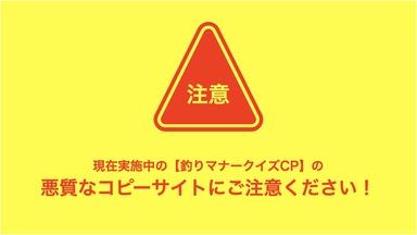 【重要】皆様、悪質なコピーサイトにご注意ください!