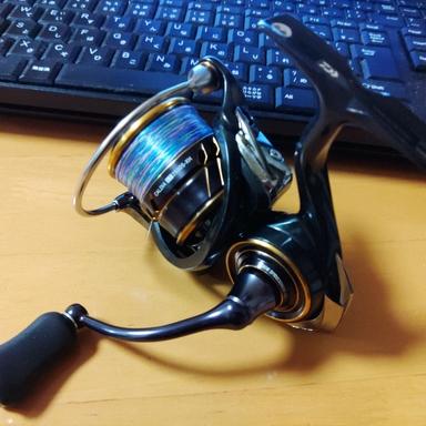 ダイワ 21カルディア LT2500S-XH