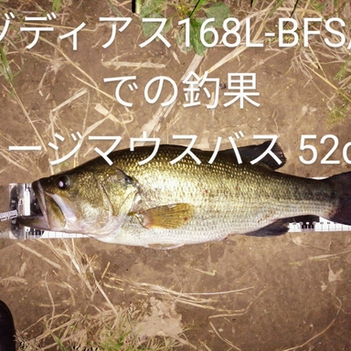 シマノ ゾディアス 168L-BFS/2