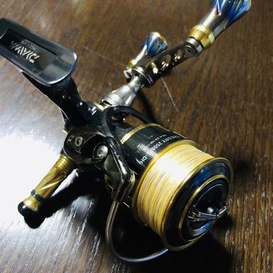 ダイワ セオリー 2508PE-DH