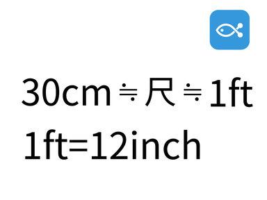 30cmだけ知っておけばいい!釣りの基礎知識〜長さの単位〜