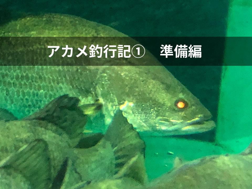 日本3大怪魚に挑戦 アカメ釣行①〜準備編〜