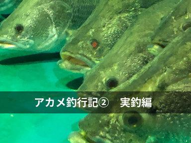 日本3大怪魚に挑戦 アカメ釣行②〜実釣編〜