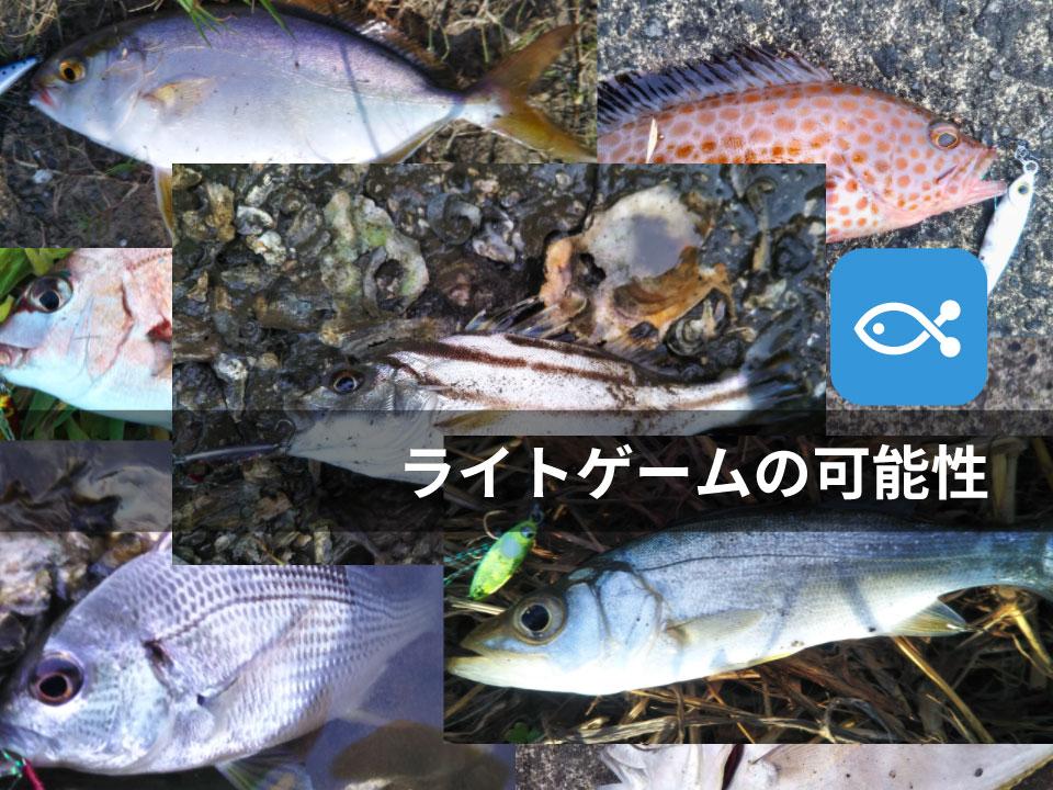 ライトタックルを使っていろいろな魚種に出会おう!!【遊び方は無限大】