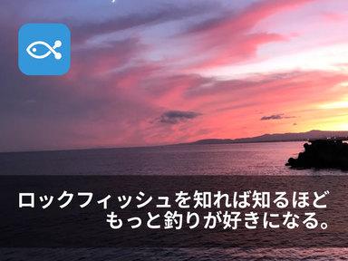 ロックフィッシュ(根魚)のことを知るともっと釣りが面白くなる!!
