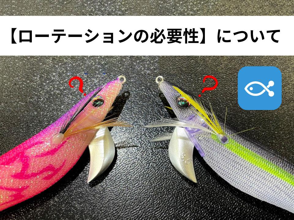 【エギング】初心者エギンガー必見!!釣れた直後はすぐにルアー変更をすることが重要だ。