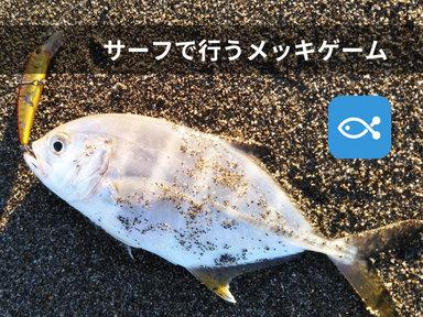 ライトゲームの人気魚種メッキをサーフで釣ろう!!byライト太郎
