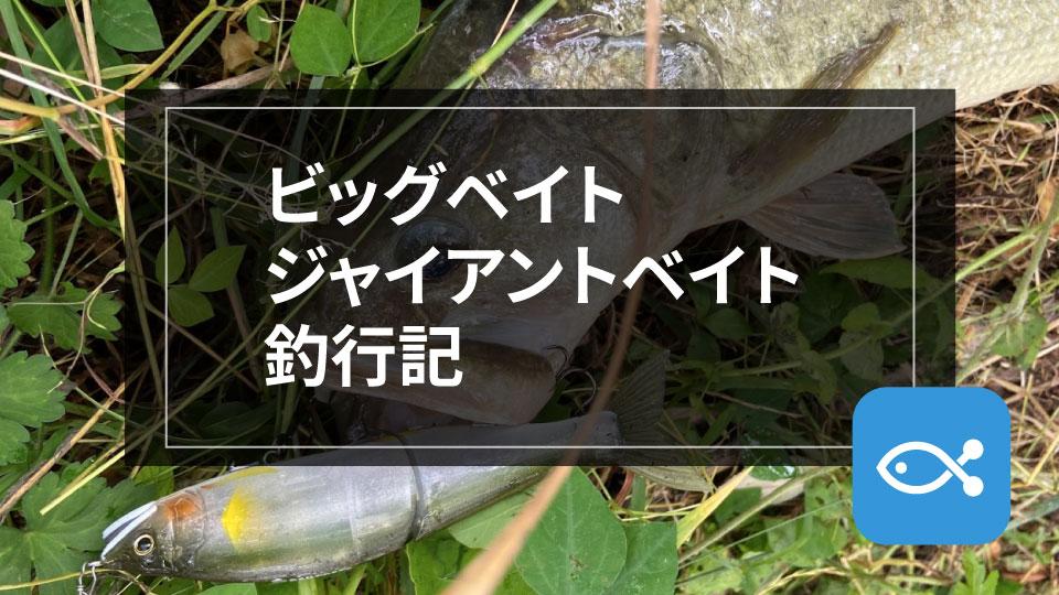 【ブラックバス】ビッグベイト/ジャイアントベイト釣行記