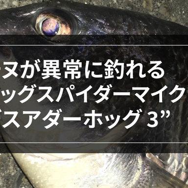 推しルアーを語る ♯03 チヌが異常に釣れる2つのワーム。