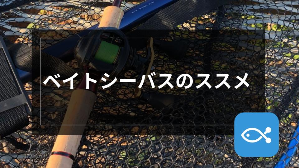 【シーバス】ベイトシーバスのススメ