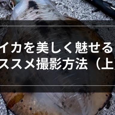 【エギング】イカを美しく魅せる撮影方法(上)