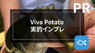 【Viva Potato】夏にこそ使いたいバスワームの実釣インプレ