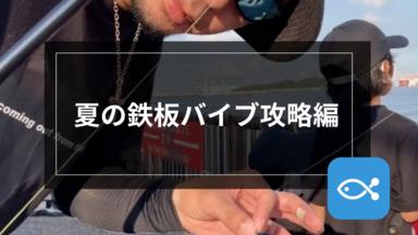 【シーバス】夏の鉄板バイブゲーム-攻略編-