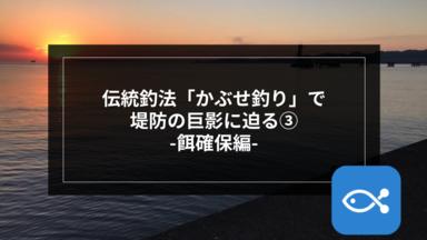 【伝統釣法】「かぶせ釣り」で堤防の巨影に迫る-餌確保編-