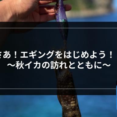 【エギング】さあ!エギングをはじめよう!! 〜秋イカの訪れとともに〜