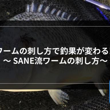 【チニング】ワームの刺し方で釣果が変わる⁉︎〜 SANE流ワームの刺し方〜