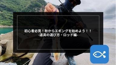 【エギング】初心者必見!秋からエギングを始めよう!! 〜道具の選び方・ロッド編〜