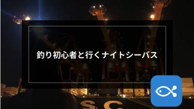 【オフショア】釣り初心者と行くナイトシーバス