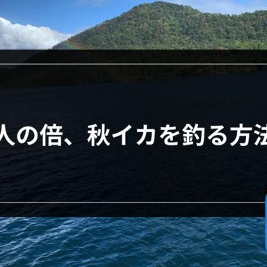 【エギング】人の倍、秋イカを釣る方法