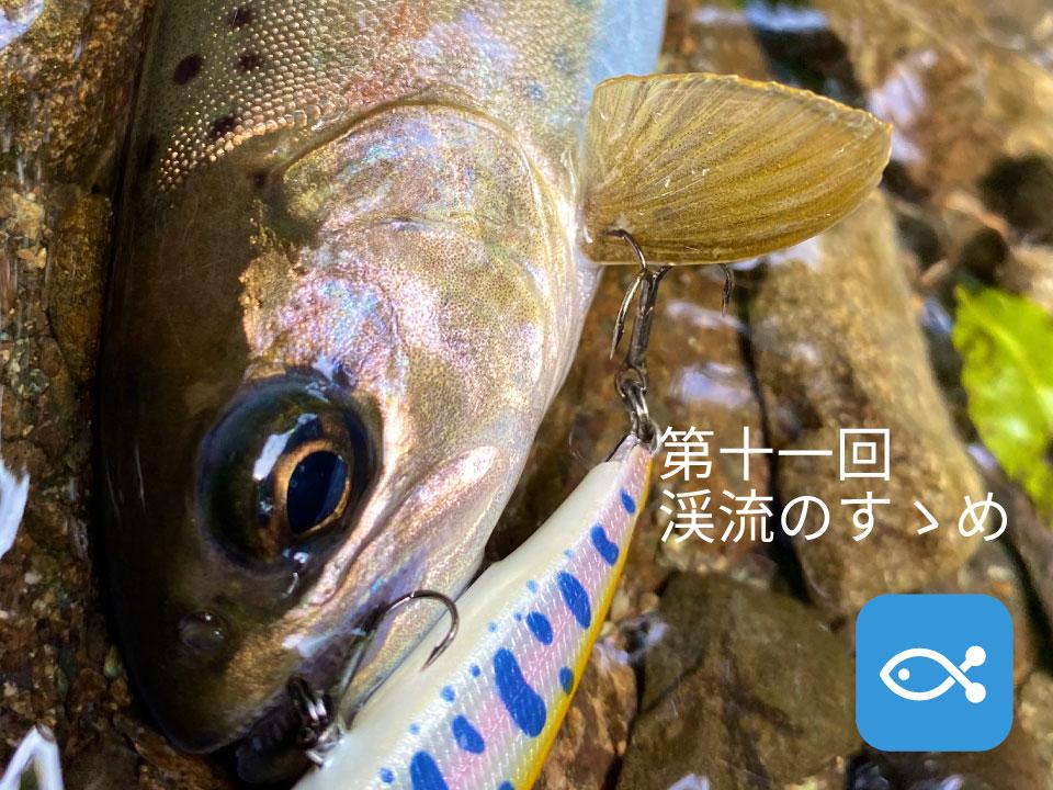 渓流のすゝめ⑪ 実践編〜神奈川県にある某有名河川〜
