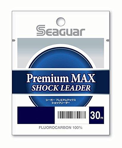 シーガー シーガーグランドマックスFX 6.0号