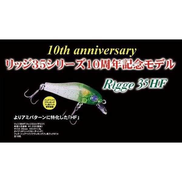 ジップベイツ Rigge 35HF