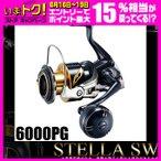 シマノ 19ステラSW 6000PG