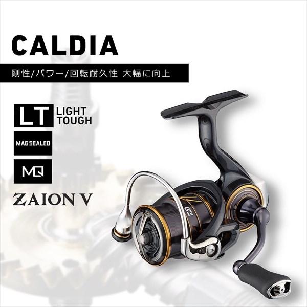 ダイワ 21カルディア LT3000