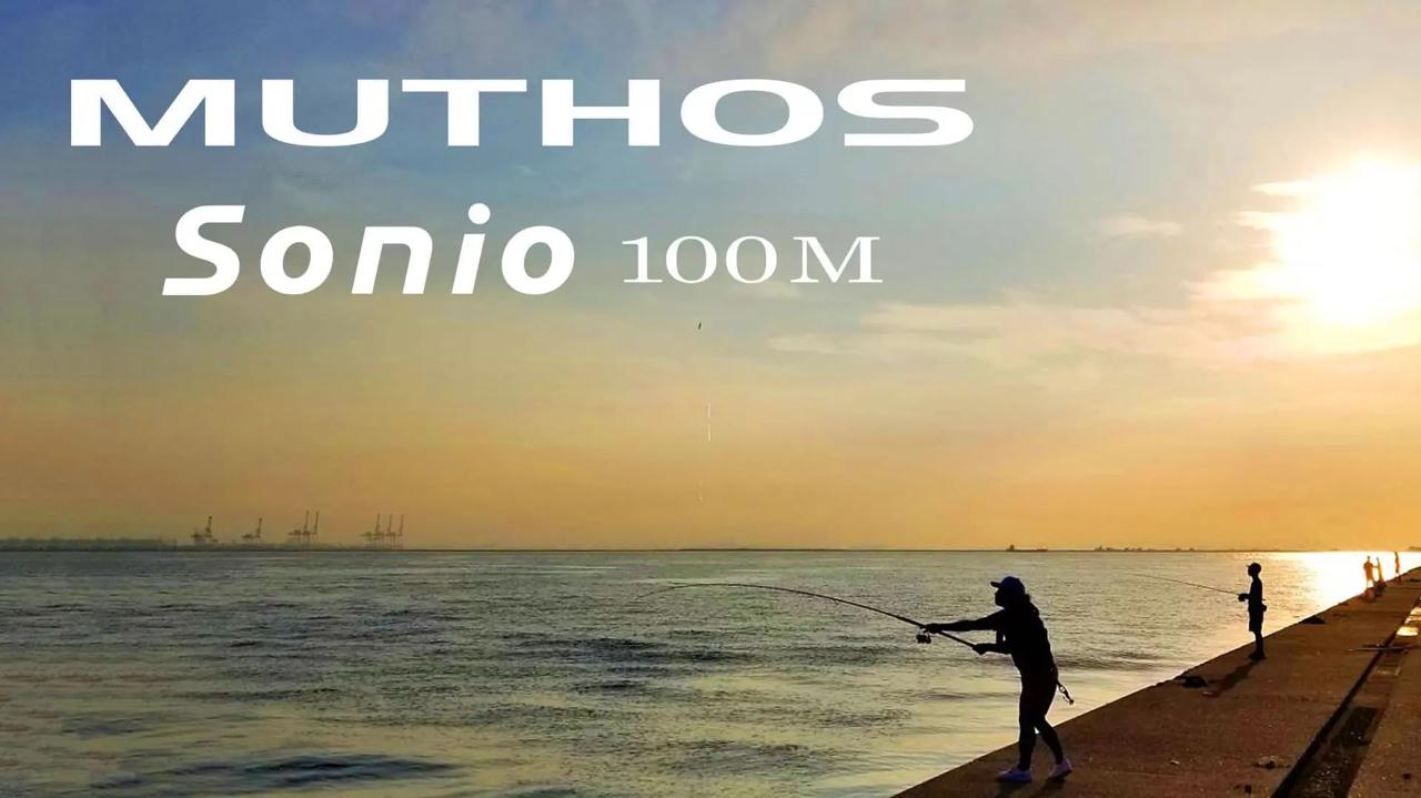 ゼナック DEFIミュートス Sonio  100M