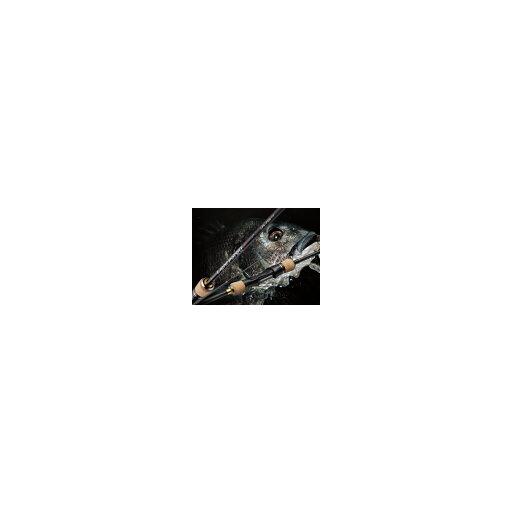 ゴールデンミーン ライトポージR 75R ライトポージ