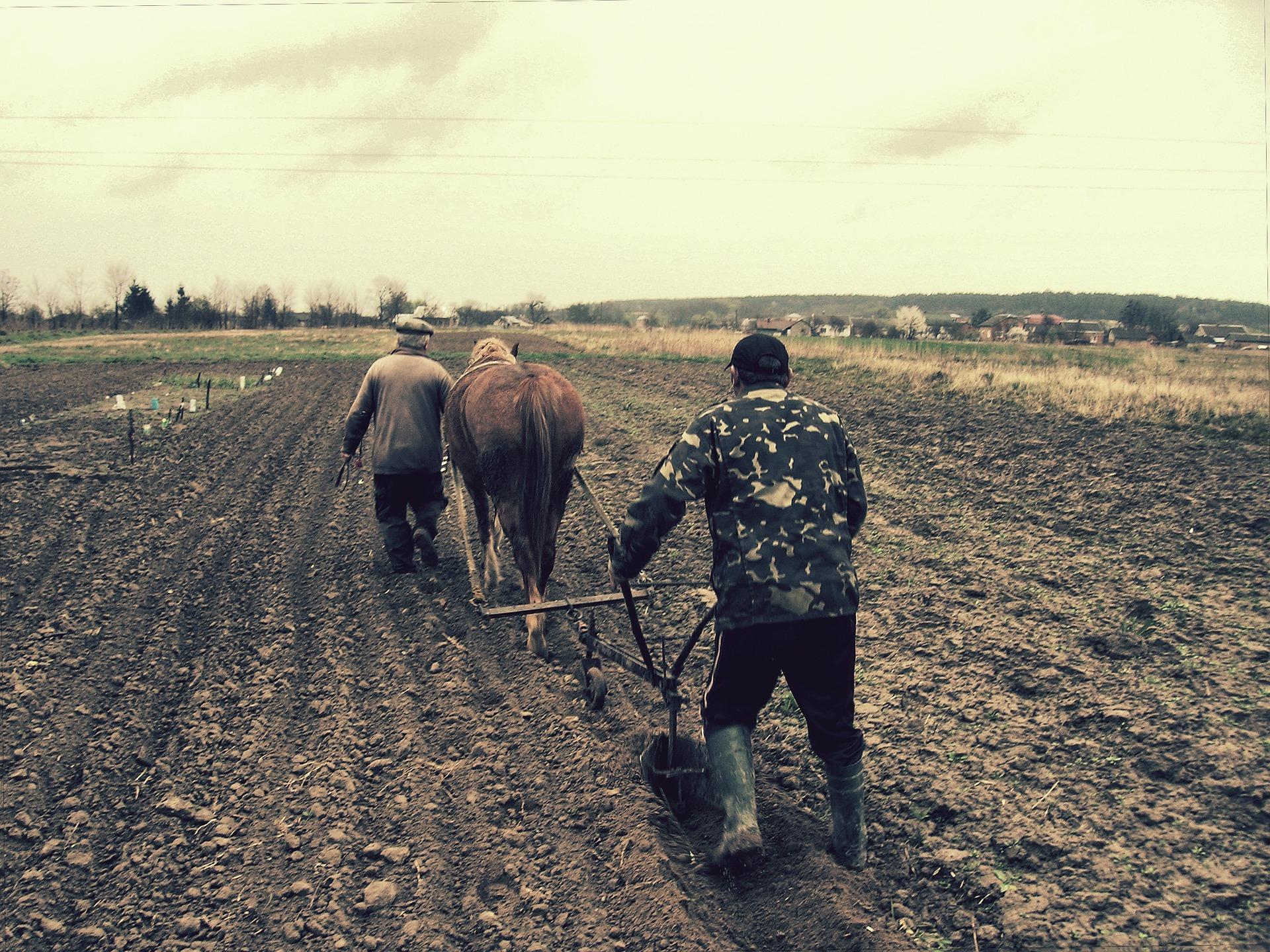 農作業者向けの靴が起源