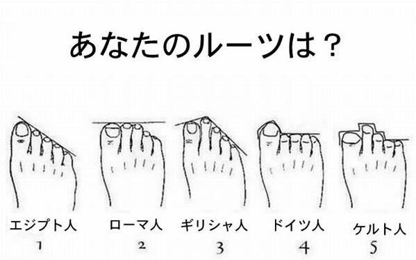 足の形は5種類