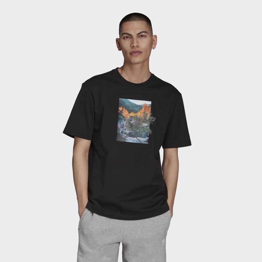 LDSP TEE アディダス アドベンチャー ランドスケープ Tシャツ