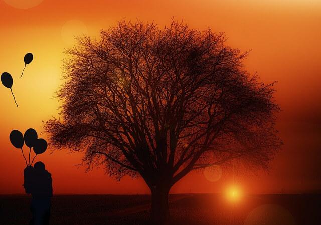 tree-1894217_640
