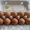 妊娠中に卵は良くない!?妊娠中に避けた方が良いもの・積極的に食べたいもの