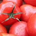 トマト酢ドリンクダイエットの効果が気になる!本当に綺麗に痩せられるの?